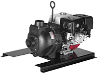 333 Series Cast Iron Pumps