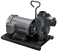 "2"" Close Coupled Electric Driven Pump - Cast Iron"